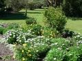 Country Garden 10