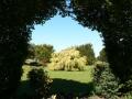 Country Garden 12