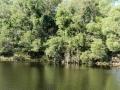 Country Lake 01