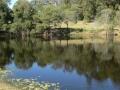 Country Lake 02