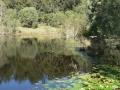 Country Lake 03