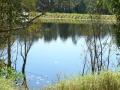Country Lake 11