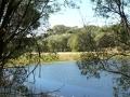 Country Lake 13