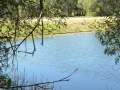 Country Lake 14