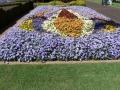 Flower Festival 26