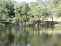Lakeside 12