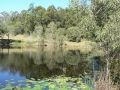 Lakeside 14