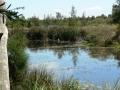 Quiet Waters03