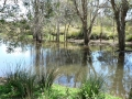 Quiet Waters06