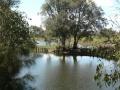 Quiet Waters08