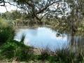 Quiet Waters10