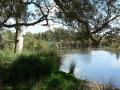 Quiet Waters11
