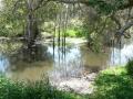 Quiet Waters14