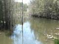Quiet Waters15