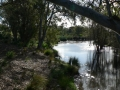 Quiet Waters24