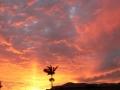 Sunrise & Sunset 10