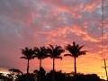 Sunrise & Sunset 12