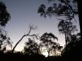 Sunrise & Sunset 13