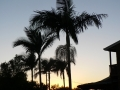 Sunrise & Sunset 15