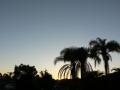 Sunrise Splendor01