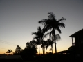 Sunrise Splendor03