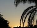 Sunrise Splendor04