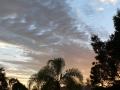 Sunrise Splendor06
