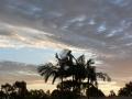 Sunrise Splendor07
