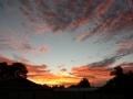 Sunrise Splendor12