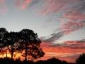 Sunrise Splendor14